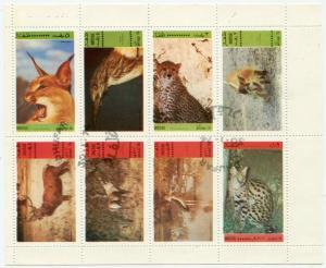 Блок   Животные Дофар